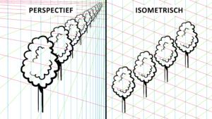 Een boom in perspectief
